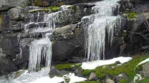 The snow is melting but the cooler was making these frozen waterfalls. Underneath the ice, the water was still running.