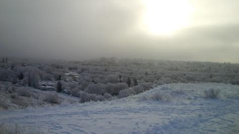A Canadian Winter Scene - Ice Fog on the Prairies